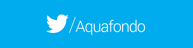 Twitter Aquafondo