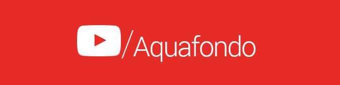 Aquafondo Aquafondo